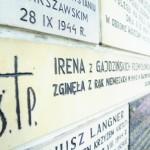 Sokółka31